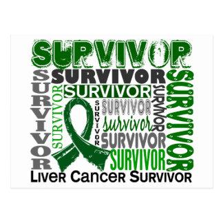 Survivor 10 Liver Cancer Postcard