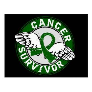 Survivor 14 Liver Cancer Post Cards