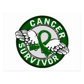 Survivor 14 Liver Cancer Postcard