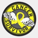 Survivor 14 Testicular Cancer