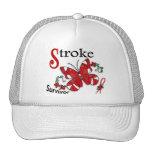 Survivor 6 Stroke