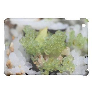 sushi california roll iPad mini cover