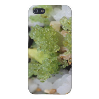 sushi california roll cases for iPhone 5