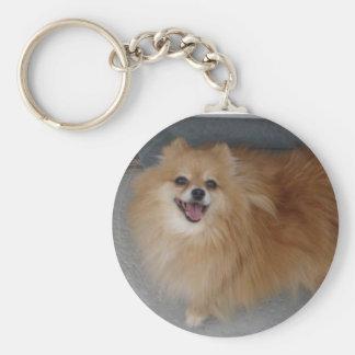 Sushi _ Pomeranian Basic Round Button Key Ring