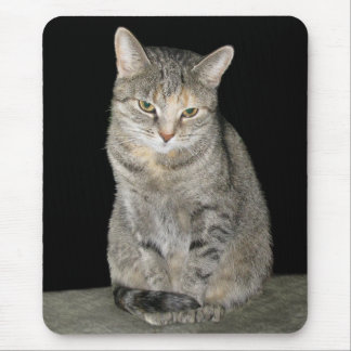 Susi Mouse Pad