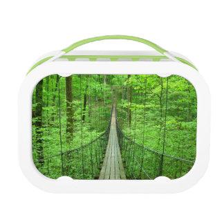 Suspension Bridge Lunch Box