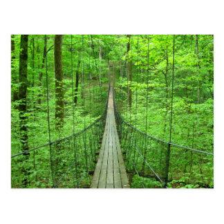 Suspension Bridge Postcard