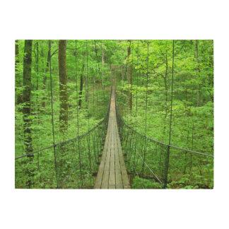 Suspension Bridge Wood Wall Art