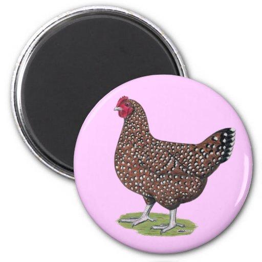 Sussex:  Speckled Hen 6 Cm Round Magnet