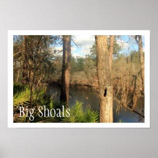 Suwanne River, Big Shoals State Park, Florida Poster