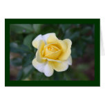 Suzanne's yellow rose note card
