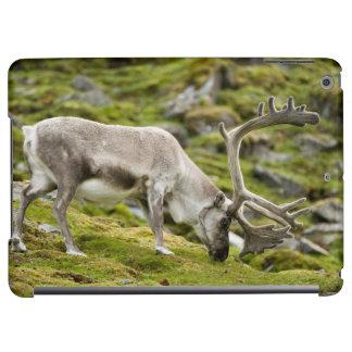 Svalbard reindeer  2 iPad air cover