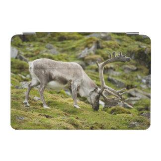 Svalbard reindeer  2 iPad mini cover