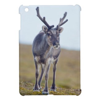 Svalbard reindeer iPad mini cover