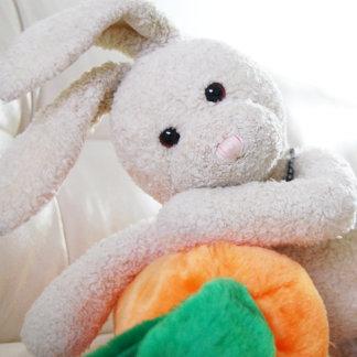 Zackary Rabbit