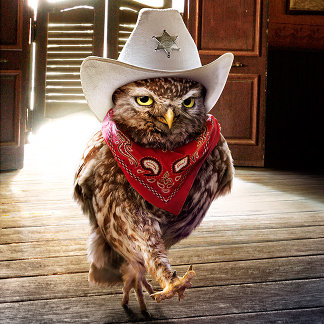 Tough Western Sheriff Owl with Attitude & Swagger
