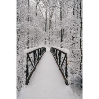 A view of a snow-covered bridge in the woods.