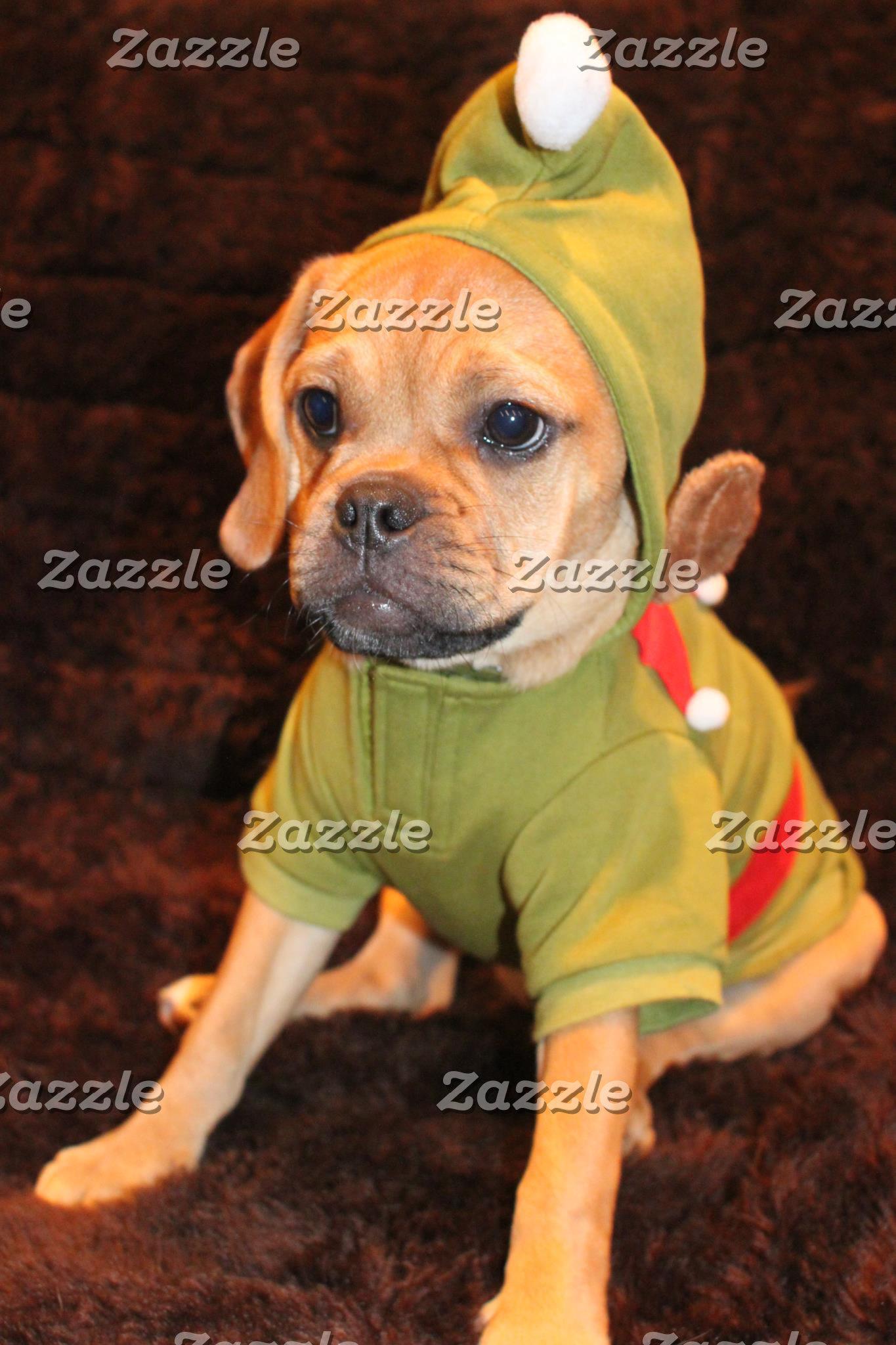 Puggle Christmas Cards!