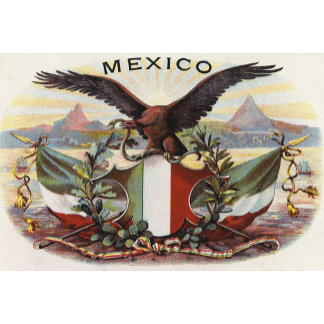 """""""Mexican Flag & Eagle Poster Print"""""""