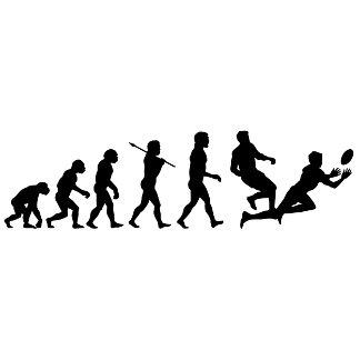 Evolution -2