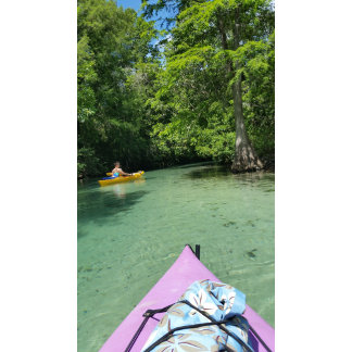 Kayak Point of View
