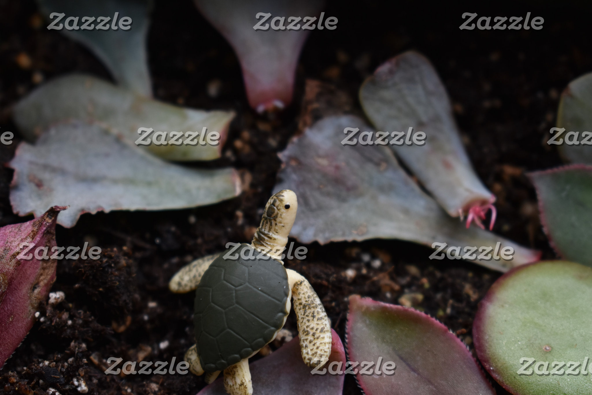 Turtle Garden