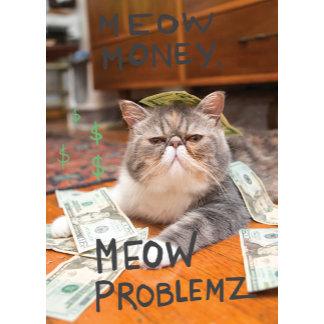 Meow Money, Meow Problemz
