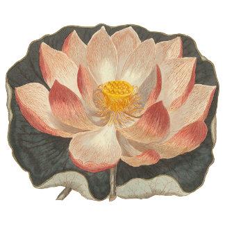 Vintage Lotus