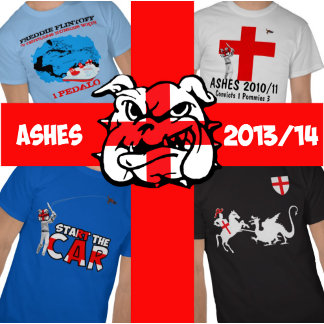 2013/14 Ashes T for the Ashes 2013/14 cricket fans