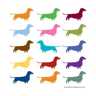 Rainbow Dachshunds