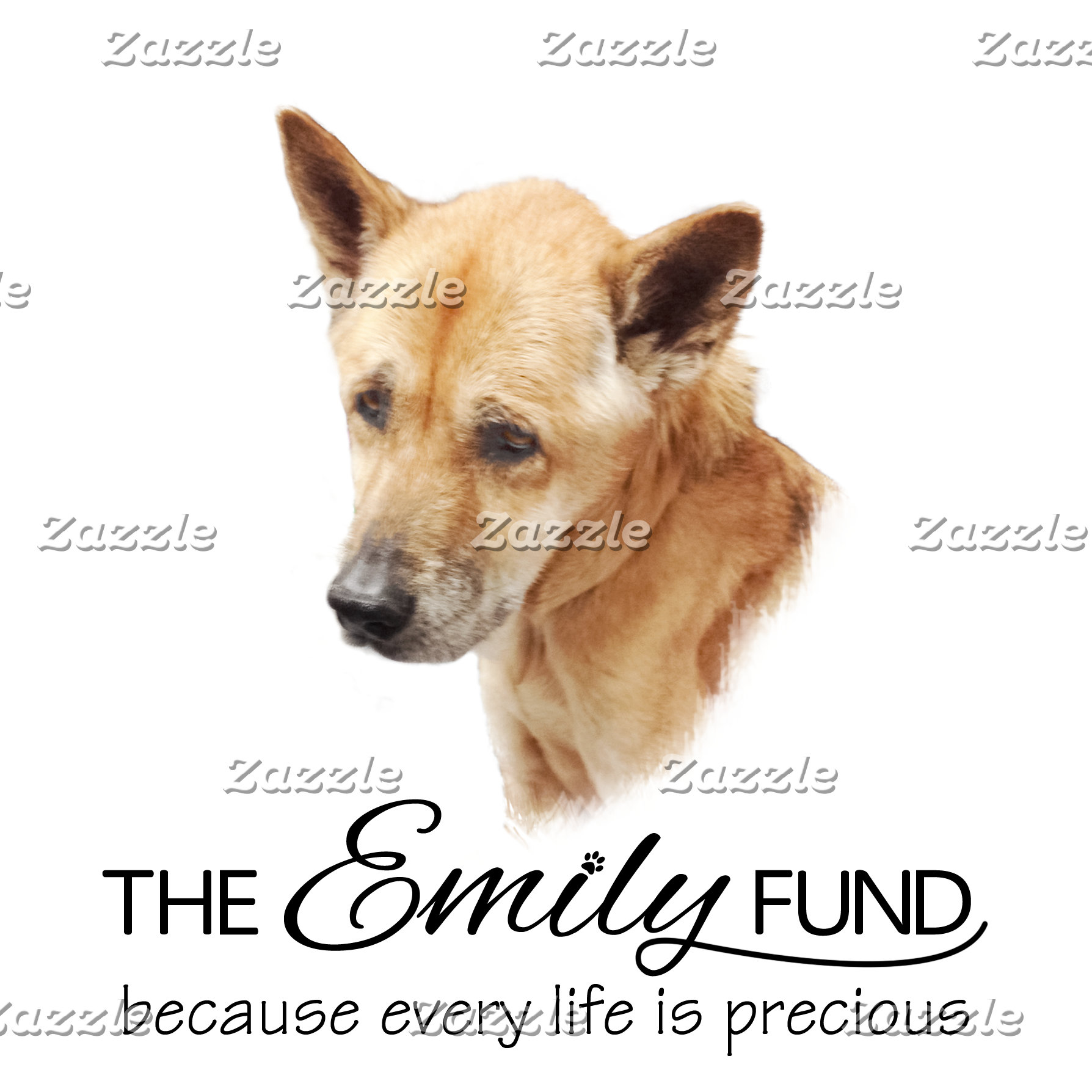 THE Emily FUND