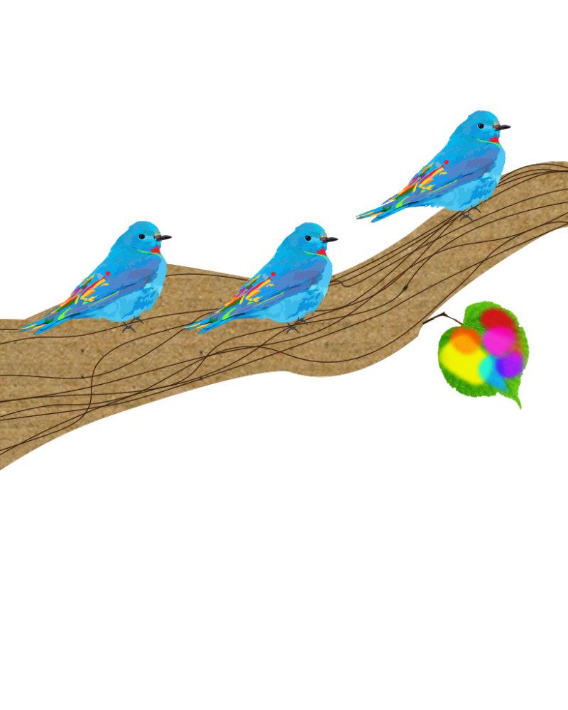 Three Lil Birds