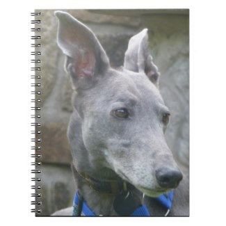 Greyhound notebooks