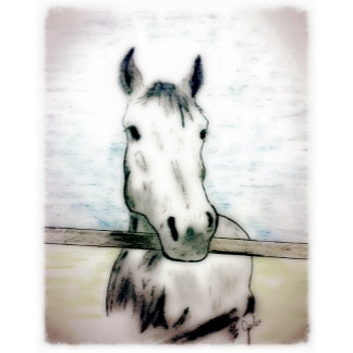 Horse-Themed Note Cards