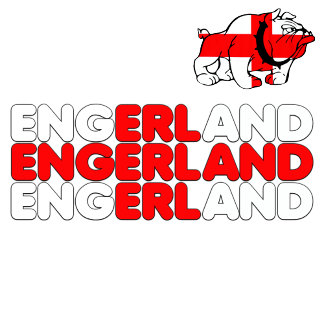 England Word Cup 2010 footy gift ideas