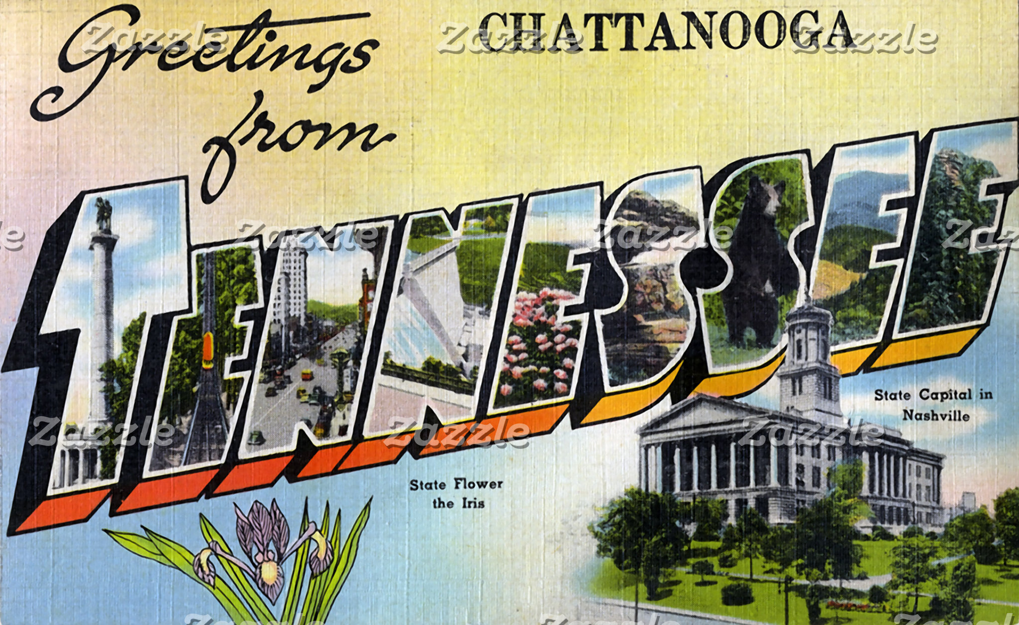 Greetings from Chattanooga Tennesee