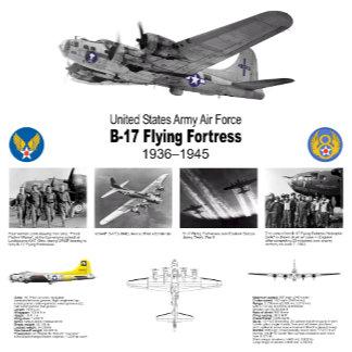 Bomber Aircraft