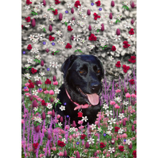 Abby in Flowers - Black Lab