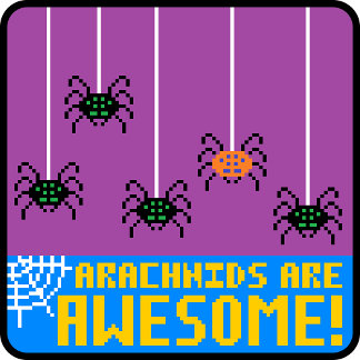 Arachnids Are Awesome!