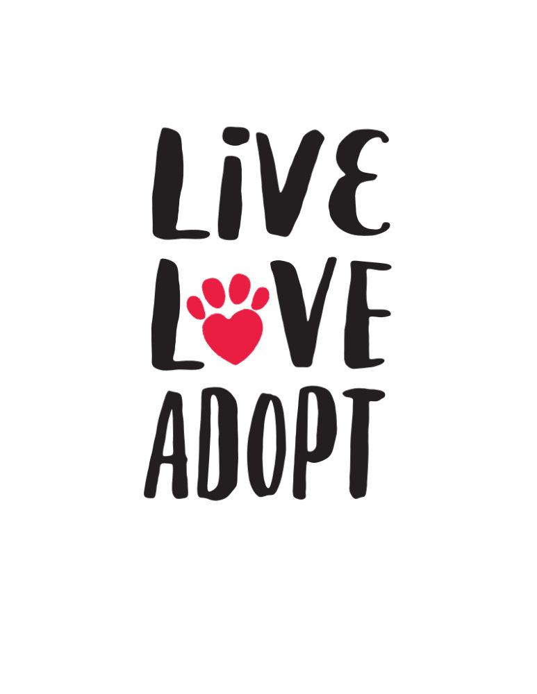 Pet Adoption Gear