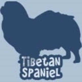 Tibetan Spaniel