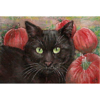 Black Cat in the Pumpkin Patch