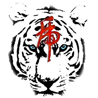 Year of Tiger