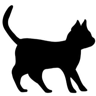 Black Cat - Schwarze Kater