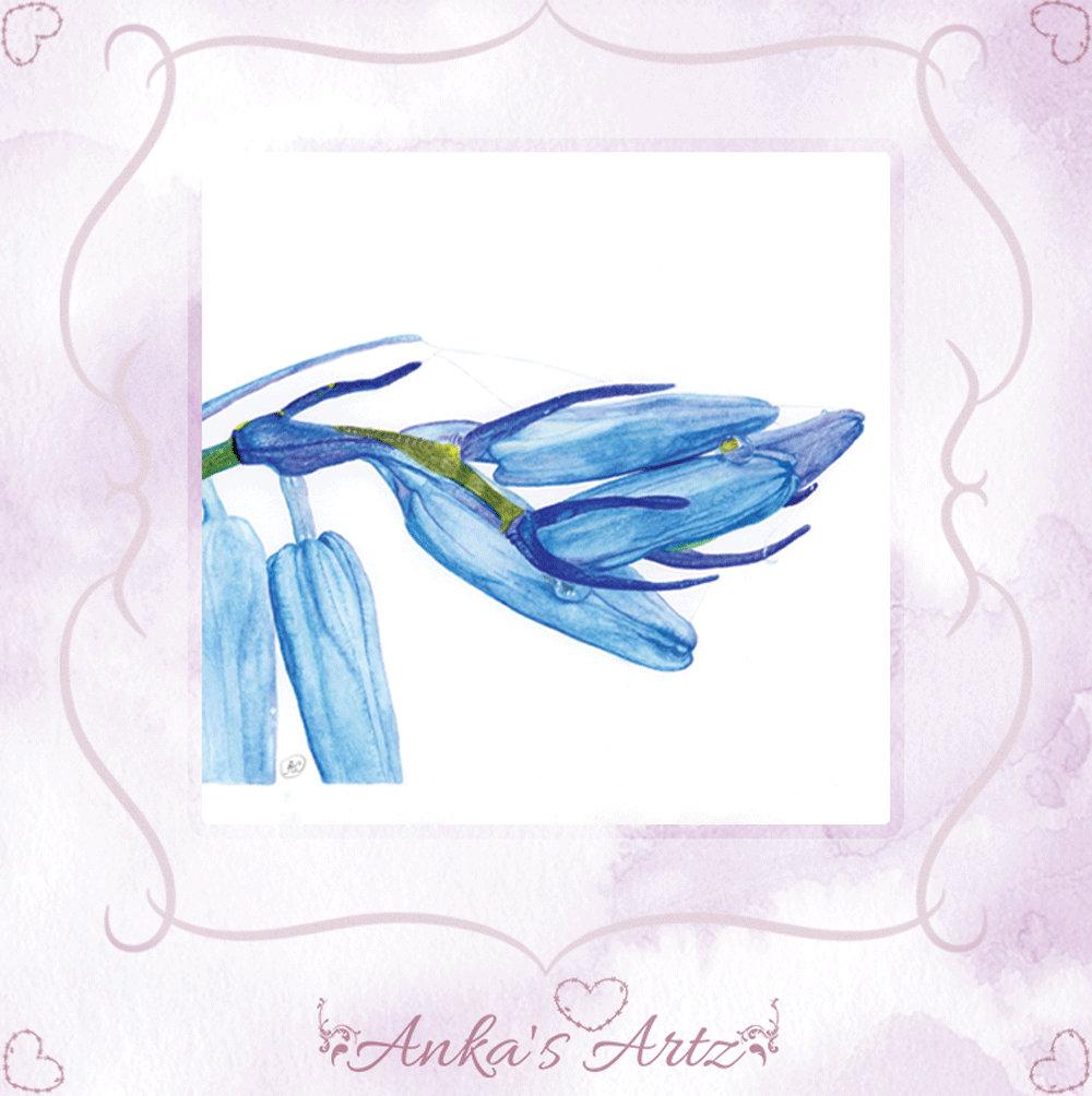 By design ~ Bluebell Flower