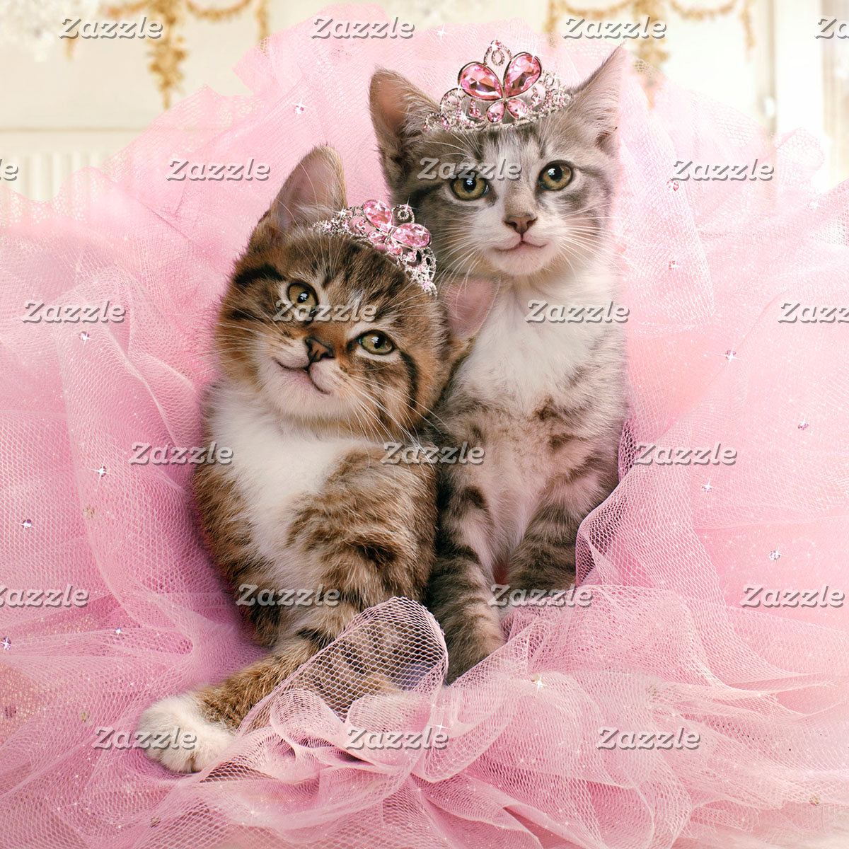 Sweet Kittens in Tiaras and Pink Sparkly Tutu