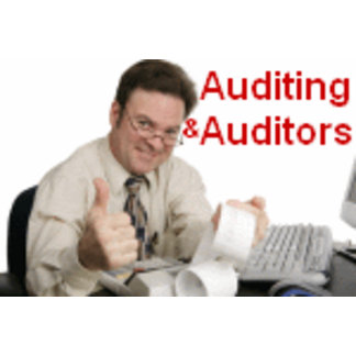 Auditing and Auditors