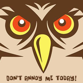Annoyed Owl
