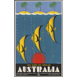 Australia Great Barrier Reef Queensland