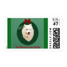 Samoyed Postage Stamps